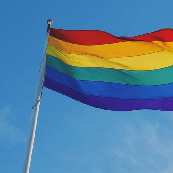 LGBTQ Meet Up